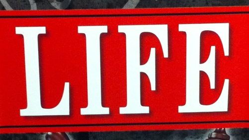 LIFE by Chris Brady and Orrin Woodward